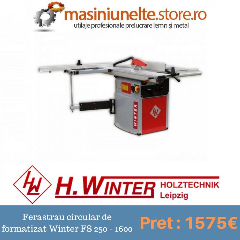 Ferastraul circular de formatizat Winter FS 250 - 1600